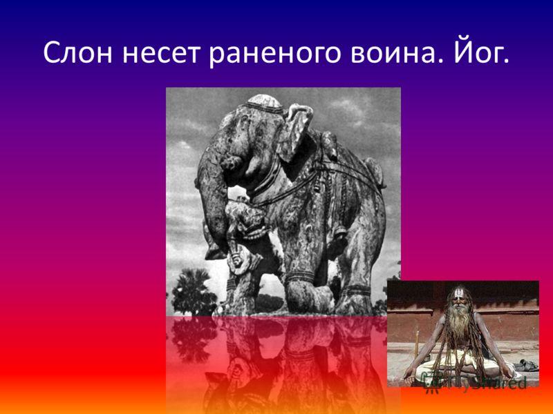 Слон несет раненого воина. Йог.