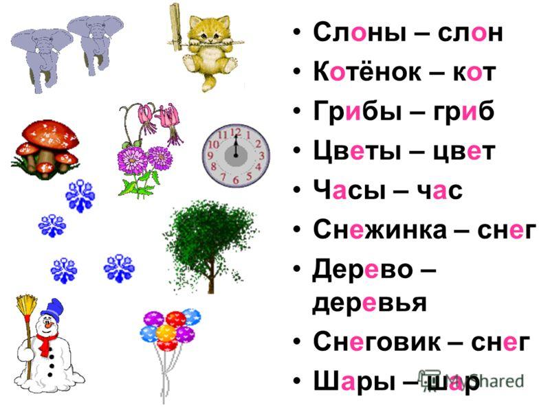 Слоны – слон Котёнок – кот Грибы – гриб Цветы – цвет Часы – час Снежинка – снег Дерево – деревья Снеговик – снег Шары – шар