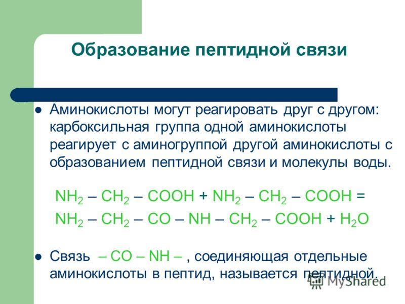 Образование пептидной связи NH 2 – CH 2 – COOH + NH 2 – CH 2 – COOH = NH 2 – CH 2 – CO – NH – CH 2 – COOH + H 2 O Связь – CO – NH –, соединяющая отдельные аминокислоты в пептид, называется пептидной. Аминокислоты могут реагировать друг с другом: карб
