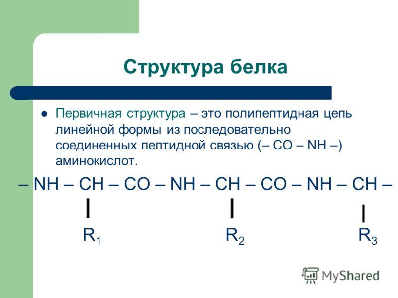 Структура белка Первичная структура – это полипептидная цепь линейной формы из последовательно соединенных пептидной связью (– CO – NH –) аминокислот. – NH – CH – CO – NH – CH – CO – NH – CH – R 1 R 2 R 3