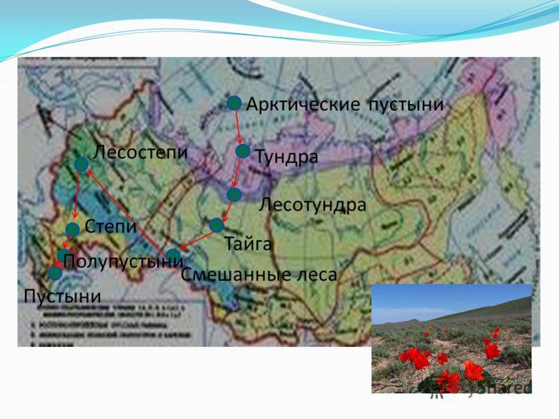 Арктические пустыни Тундра Лесотундра Тайга Смешанные леса Лесостепи Степи Полупустыни Пустыни