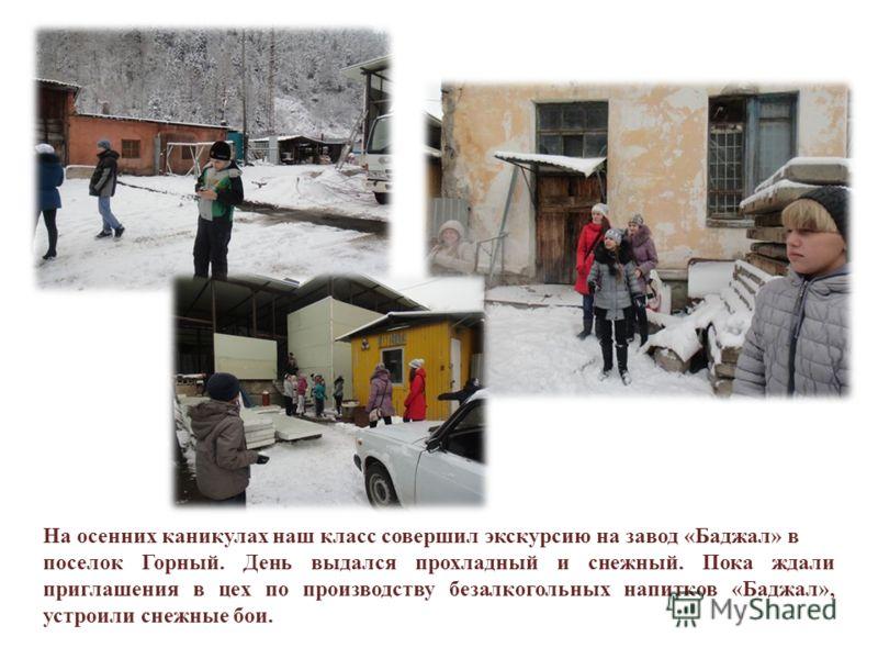 На осенних каникулах наш класс совершил экскурсию на завод «Баджал» в поселок Горный. День выдался прохладный и снежный. Пока ждали приглашения в цех по производству безалкогольных напитков «Баджал», устроили снежные бои.