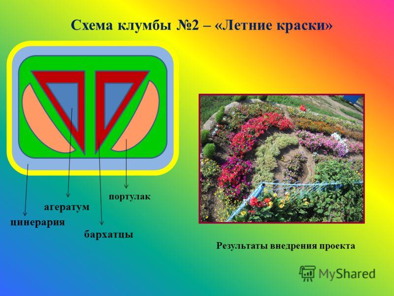 Схема клумбы 2 – «Летние краски» цинерария портулак бархатцы агератум Результаты внедрения проекта