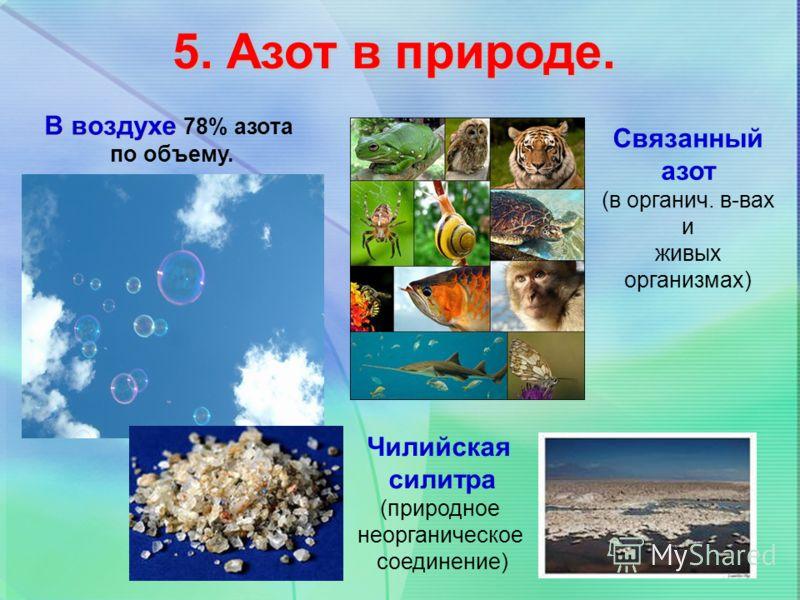 5. Азот в природе. В воздухе В воздухе 78% азота по объему. Чилийская силитра (природное неорганическое соединение) Связанный азот (в органич. в-вах и живых организмах)