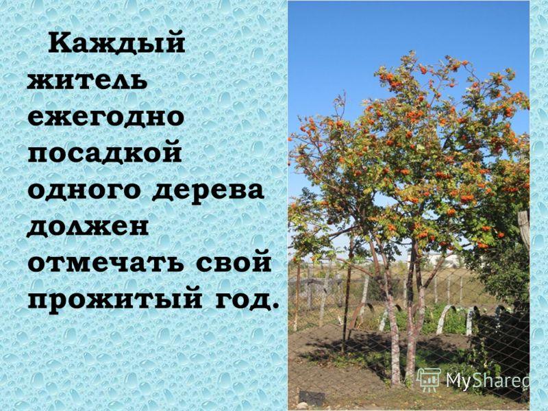 Каждый житель ежегодно посадкой одного дерева должен отмечать свой прожитый год.