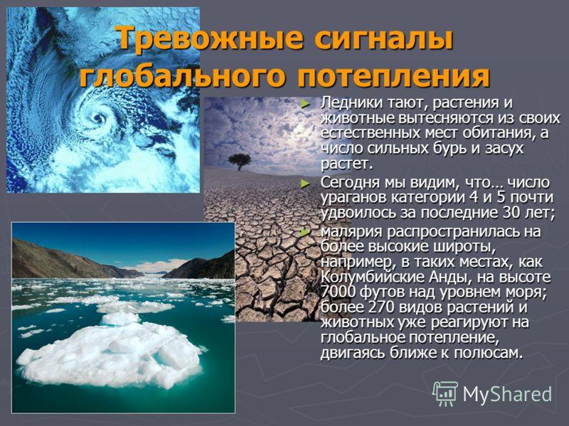 Тревожные сигналы глобального потепления Ледники тают, растения и животные вытесняются из своих естественных мест обитания, а число сильных бурь и засух растет. Ледники тают, растения и животные вытесняются из своих естественных мест обитания, а числ