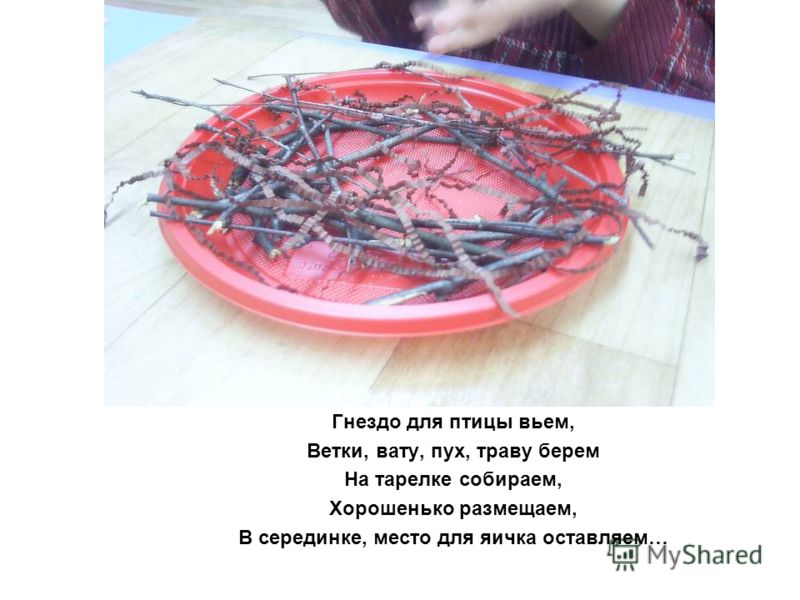 Гнездо для птицы вьем, Ветки, вату, пух, траву берем На тарелке собираем, Хорошенько размещаем, В серединке, место для яичка оставляем…