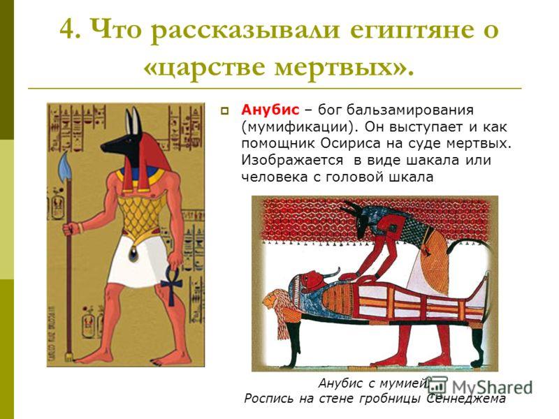 Анубис – бог бальзамирования (мумификации). Он выступает и как помощник Осириса на суде мертвых. Изображается в виде шакала или человека с головой шкала 4. Что рассказывали египтяне о «царстве мертвых». Анубис с мумией. Роспись на стене гробницы Сенн