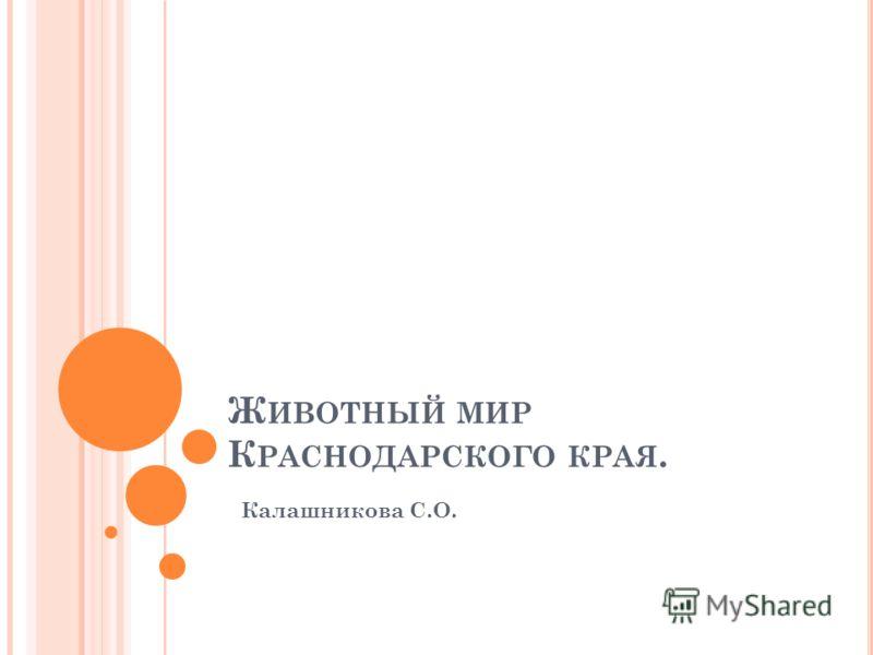 Ж ИВОТНЫЙ МИР К РАСНОДАРСКОГО КРАЯ. Калашникова С.О.