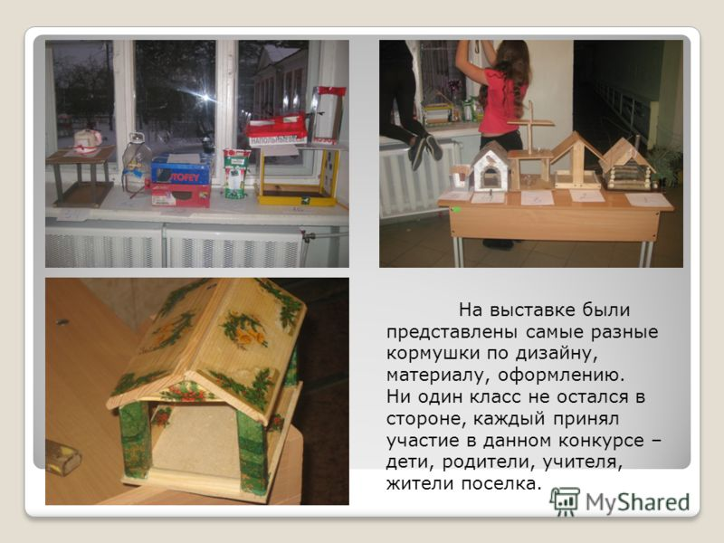 На выставке были представлены самые разные кормушки по дизайну, материалу, оформлению. Ни один класс не остался в стороне, каждый принял участие в данном конкурсе – дети, родители, учителя, жители поселка.