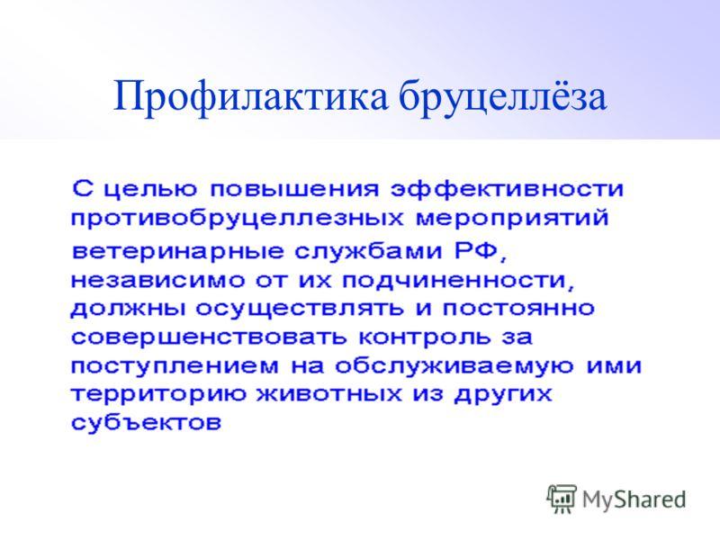 Профилактика бруцеллёза