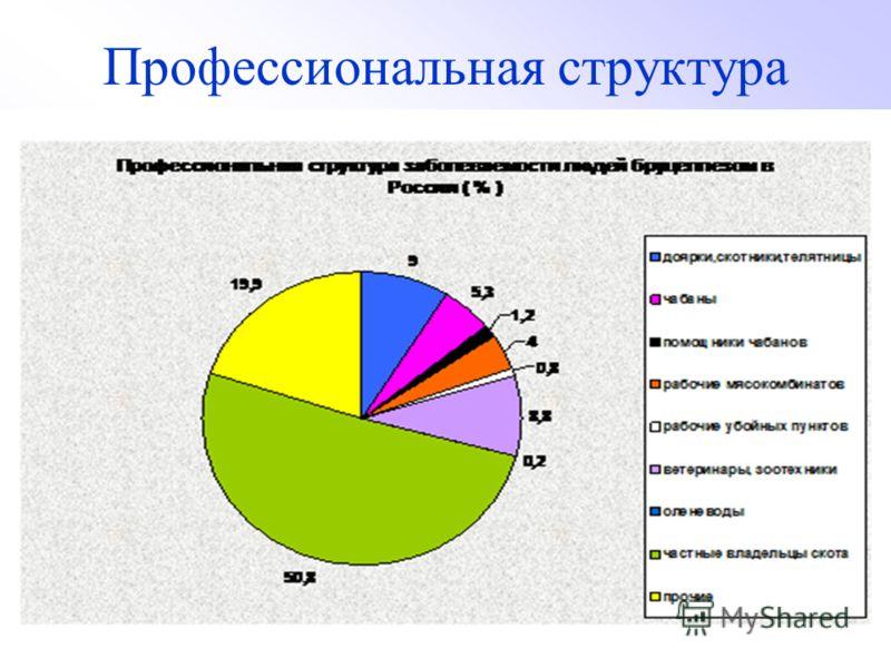 Профессиональная структура