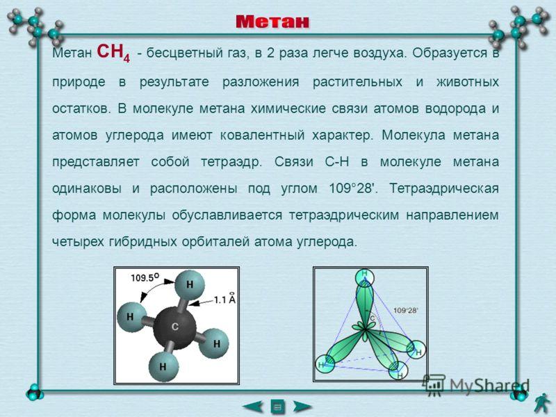 Метан CH 4 - бесцветный газ, в 2 раза легче воздуха. Образуется в природе в результате разложения растительных и животных остатков. В молекуле метана химические связи атомов водорода и атомов углерода имеют ковалентный характер. Молекула метана предс