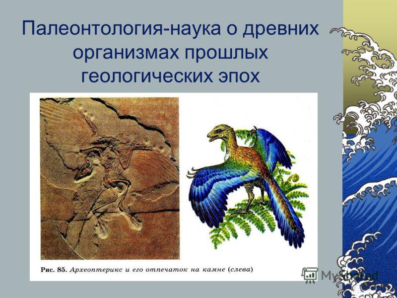 Палеонтология-наука о древних организмах прошлых геологических эпох