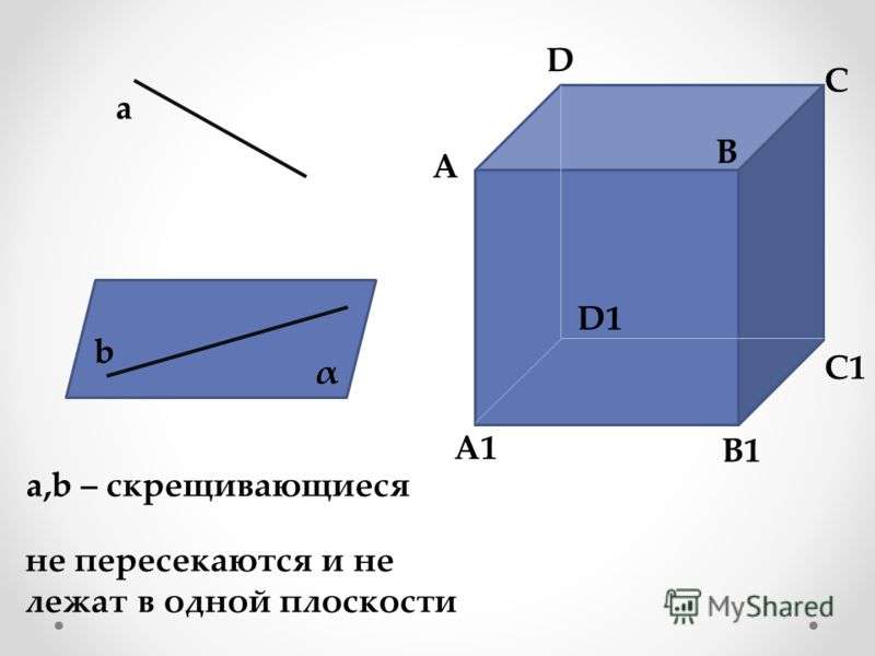 a b α a,b – скрещивающиеся не пересекаются и не лежат в одной плоскости A A1 B B1 C C1 D D1