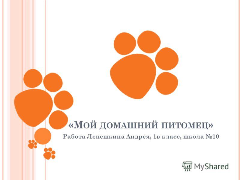 «М ОЙ ДОМАШНИЙ ПИТОМЕЦ » Работа Лепешкина Андрея, 1в класс, школа 10