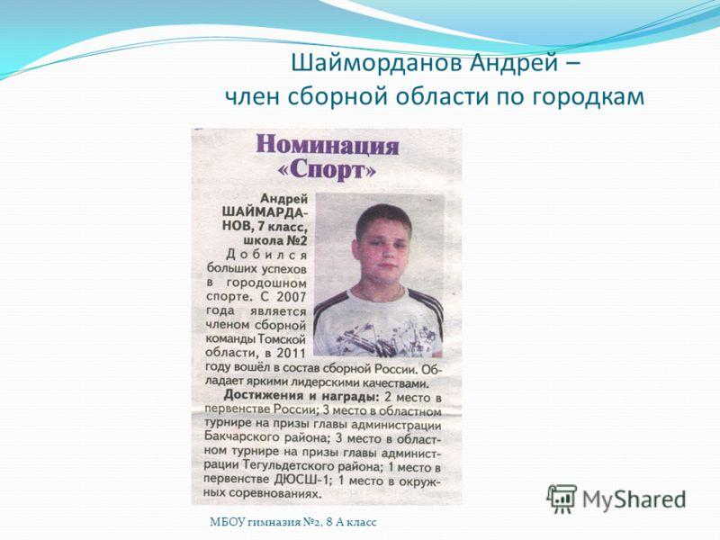 Шайморданов Андрей – член сборной области по городкам МБОУ гимназия 2, 8 А класс