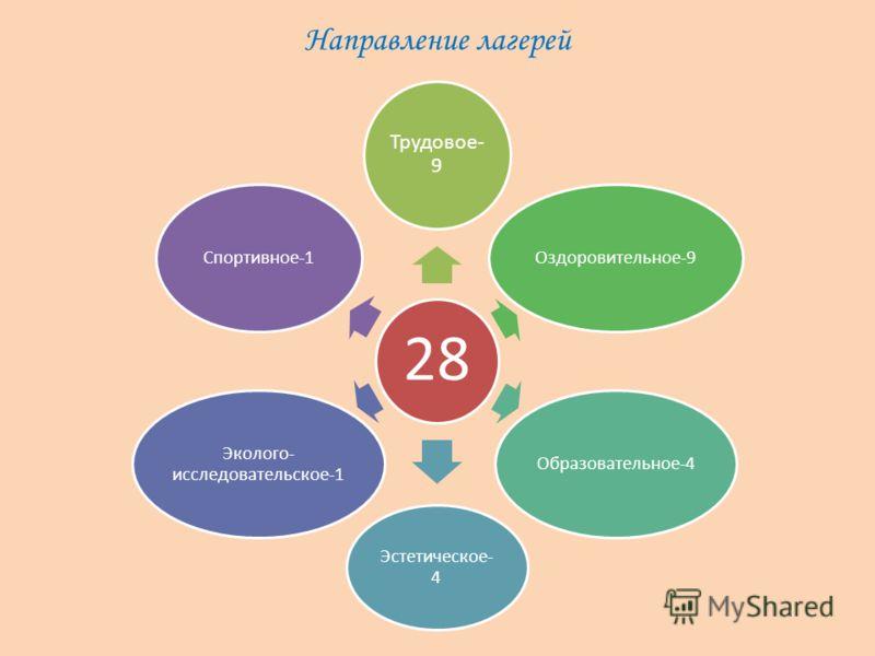 Направление лагерей 28 Трудовое- 9 Оздоровительное-9Образовательное-4 Эстетическое- 4 Эколого- исследовательское-1 Спортивное-1