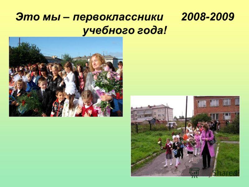 Это мы – первоклассники 2008-2009 учебного года!