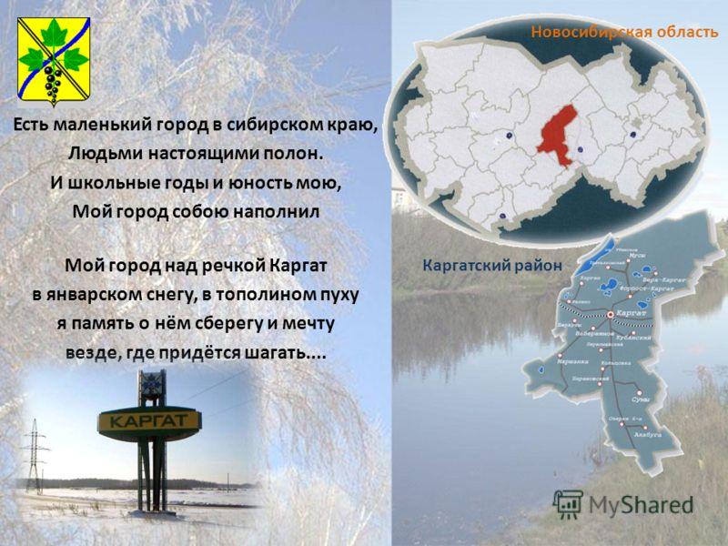 Есть маленький город в сибирском краю, Людьми настоящими полон. И школьные годы и юность мою, Мой город собою наполнил Мой город над речкой Каргат в январском снегу, в тополином пуху я память о нём сберегу и мечту везде, где придётся шагать.... Новос