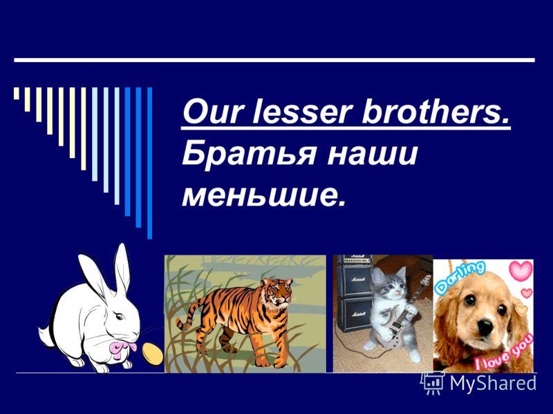 Our lesser brothers. Братья наши меньшие.