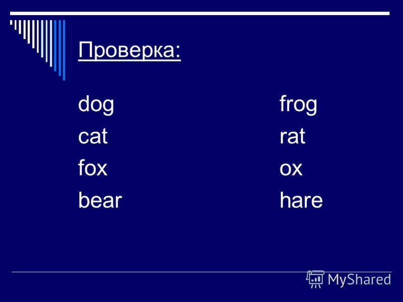 Проверка: dogfrog catrat foxox bearhare
