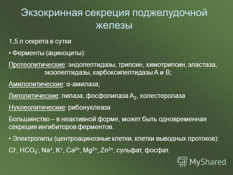 Экзокринная секреция поджелудочной железы 1,5 л секрета в сутки Ферменты (ациноциты): Протеолитические: эндопептидазы, трипсин, химотрипсин, эластаза, экзопептидазы, карбоксипептидазы А и В; Амилолитические: α-амилаза; Липолитические: липаза, фосфоли