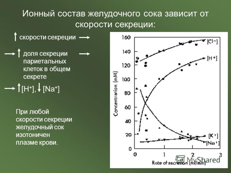 Ионный состав желудочного сока зависит от скорости секреции: скорости секреции доля секреции париетальных клеток в общем секрете [H + ], [Na + ] При любой скорости секреции желудочный сок изотоничен плазме крови.