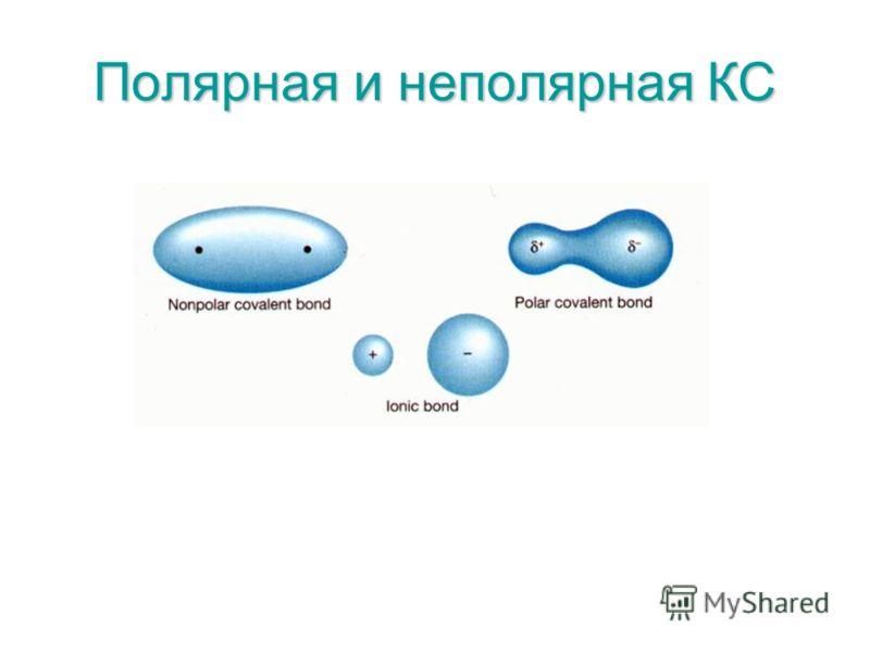Полярная и неполярная КС