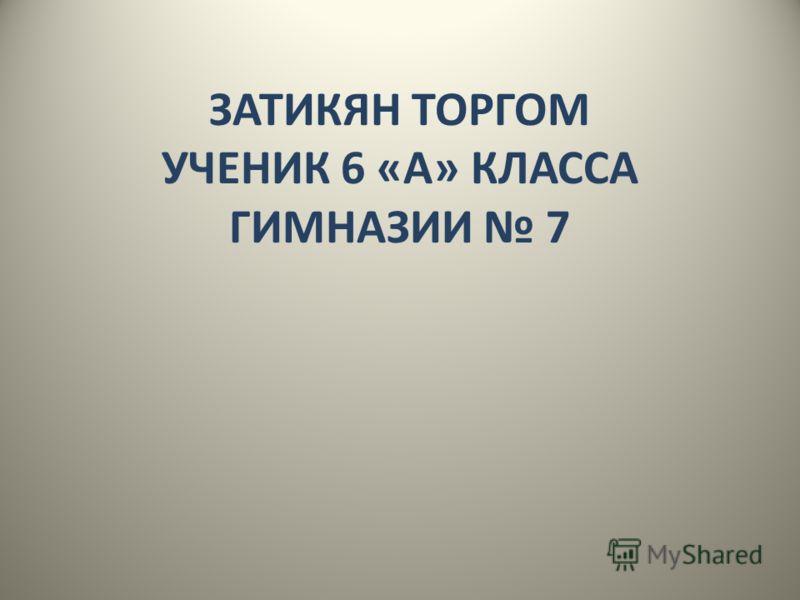 ЗАТИКЯН ТОРГОМ УЧЕНИК 6 «А» КЛАССА ГИМНАЗИИ 7