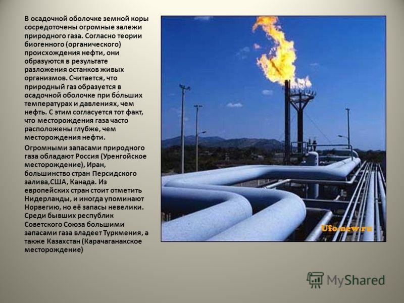 В осадочной оболочке земной коры сосредоточены огромные залежи природного газа. Согласно теории биогенного (органического) происхождения нефти, они образуются в результате разложения останков живых организмов. Считается, что природный газ образуется