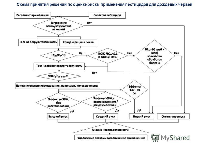 Схема принятия решений по оценке риска применения пестицидов для дождевых червей