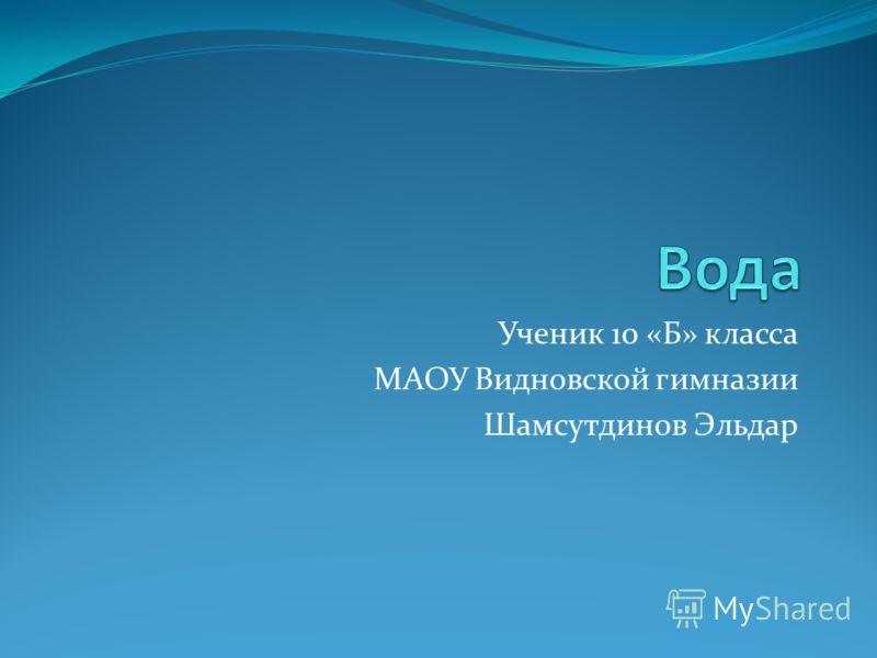 Ученик 10 «Б» класса МАОУ Видновской гимназии Шамсутдинов Эльдар