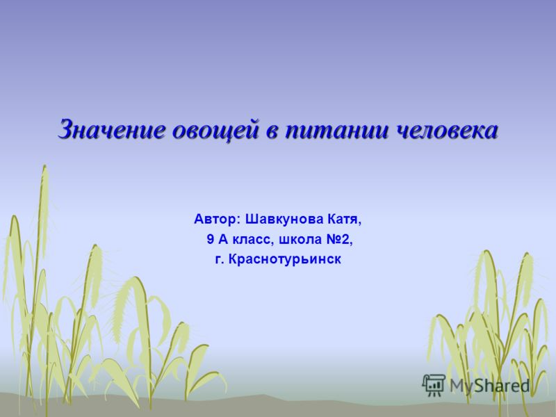 Значение овощей в питании человека Автор: Шавкунова Катя, 9 А класс, школа 2, г. Краснотурьинск