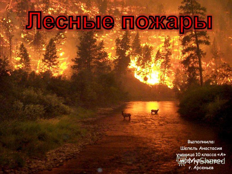 Выполнила: Шепель Анастасия ученица 10 класса «А» МОБУ «Лицей 9» г. Арсеньев