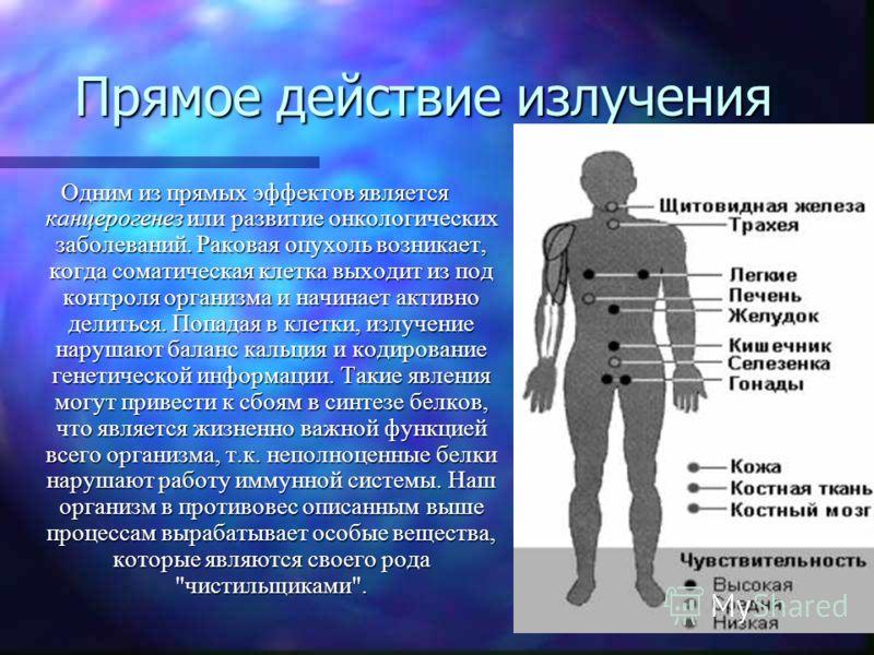 Прямое действие излучения Одним из прямых эффектов является канцерогенез или развитие онкологических заболеваний. Раковая опухоль возникает, когда соматическая клетка выходит из под контроля организма и начинает активно делиться. Попадая в клетки, из