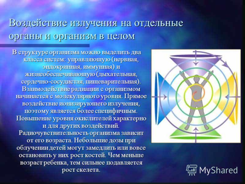 Воздействие излучения на отдельные органы и организм в целом В структуре организма можно выделить два класса систем: управляющую (нервная, эндокринная