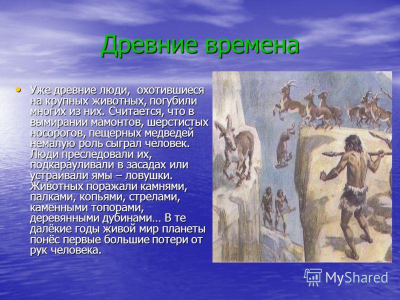 Презентация на тему Реферат На тему Как человек изменил Землю  3 Древние
