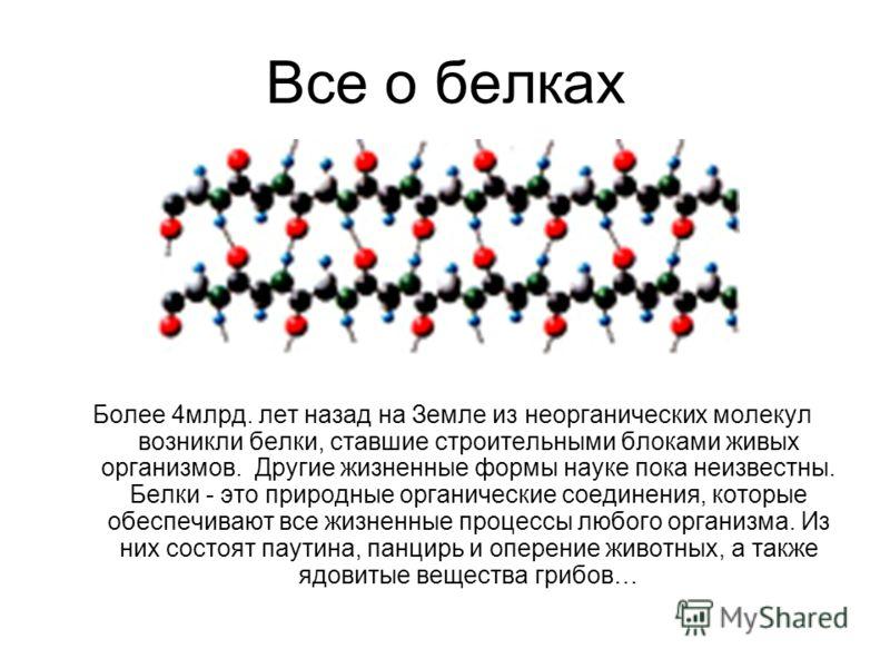 Все о белках Более 4млрд. лет назад на Земле из неорганических молекул возникли белки, ставшие строительными блоками живых организмов. Другие жизненные формы науке пока неизвестны. Белки - это природные органические соединения, которые обеспечивают в