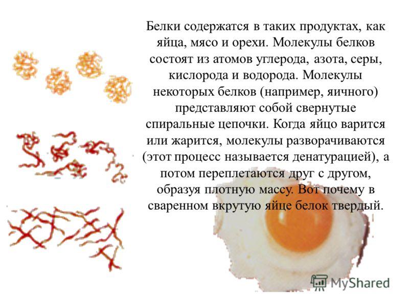 Белки содержатся в таких продуктах, как яйца, мясо и орехи. Молекулы белков состоят из атомов углерода, азота, серы, кислорода и водорода. Молекулы некоторых белков (например, яичного) представляют собой свернутые спиральные цепочки. Когда яйцо варит