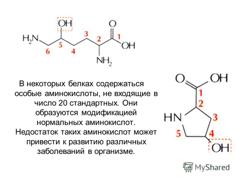 В некоторых белках содержаться особые аминокислоты, не входящие в число 20 стандартных. Они образуются модификацией нормальных аминокислот. Недостаток таких аминокислот может привести к развитию различных заболеваний в организме.