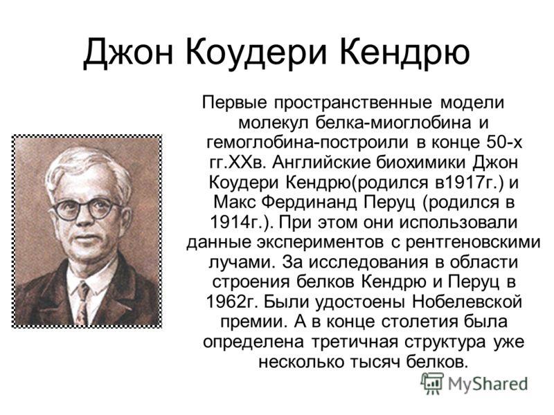 Джон Коудери Кендрю Первые пространственные модели молекул белка-миоглобина и гемоглобина-построили в конце 50-х гг.XXв. Английские биохимики Джон Коудери Кендрю(родился в1917г.) и Макс Фердинанд Перуц (родился в 1914г.). При этом они использовали да