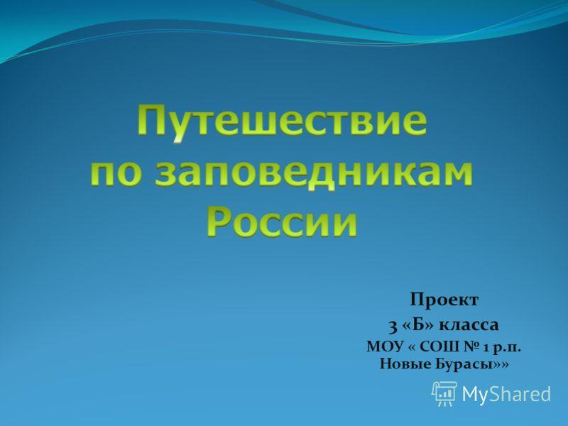 Проект 3 «Б» класса МОУ « СОШ 1 р.п. Новые Бурасы»»