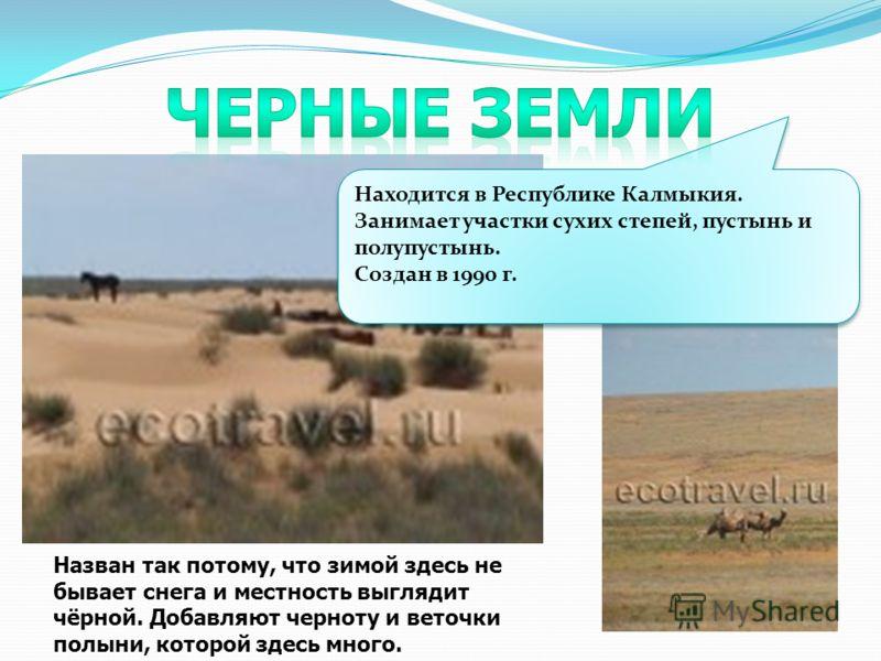 Находится в Республике Калмыкия. Занимает участки сухих степей, пустынь и полупустынь. Создан в 1990 г. Находится в Республике Калмыкия. Занимает участки сухих степей, пустынь и полупустынь. Создан в 1990 г. Назван так потому, что зимой здесь не быва
