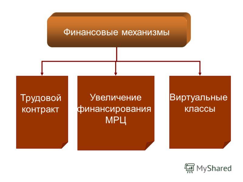 Финансовые механизмы Трудовой контракт Увеличение финансирования МРЦ Виртуальные классы