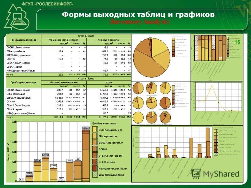 Формы выходных таблиц и графиков (Inventory Analyst) 16