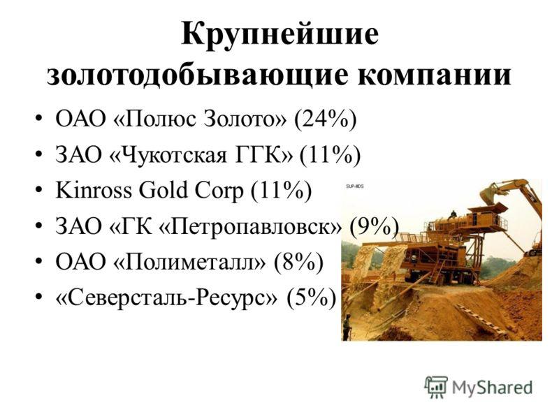 Крупнейшие золотодобывающие компании ОАО «Полюс Золото» (24%) ЗАО «Чукотская ГГК» (11%) Kinross Gold Corp (11%) ЗАО «ГК «Петропавловск» (9%) ОАО «Полиметалл» (8%) «Северсталь-Ресурс» (5%)
