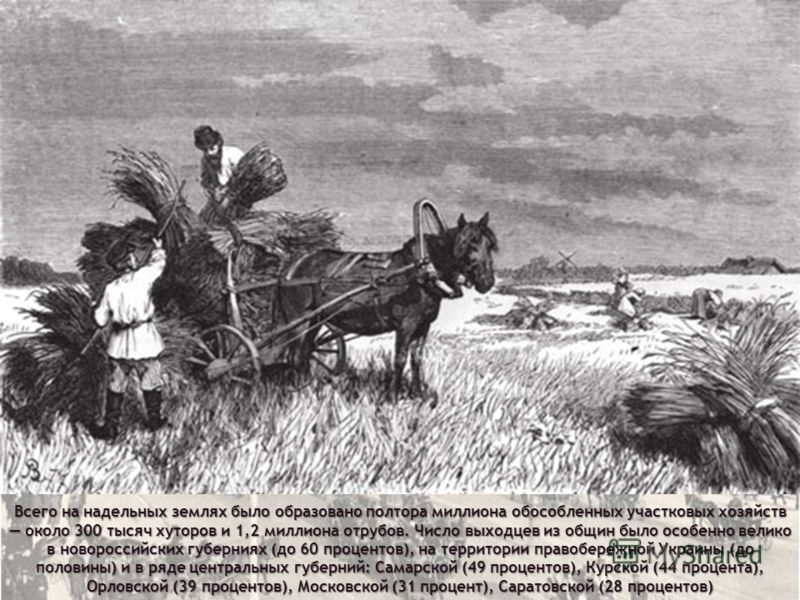Всего на надельных землях было образовано полтора миллиона обособленных участковых хозяйств около 300 тысяч хуторов и 1,2 миллиона отрубов. Число выходцев из общин было особенно велико в новороссийских губерниях (до 60 процентов), на территории право