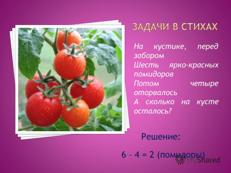 На кустике, перед забором Шесть ярко-красных помидоров Потом четыре оторвалось А сколько на кусте осталось? Решение: 6 – 4 = 2 (помидоры)
