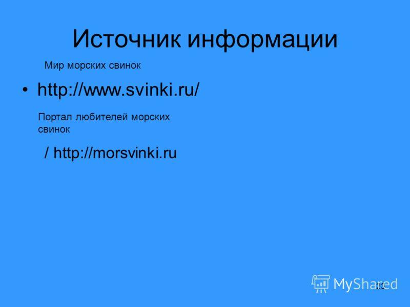 23 Источник информации http://www.svinki.ru/ / http://morsvinki.ru Портал любителей морских свинок Мир морских свинок